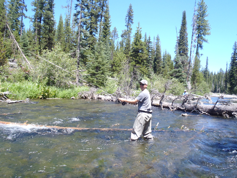 Upper deschutes river fly fishing guides fly fishing for Central oregon fishing report